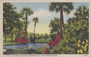 Florida Orlando Lily Pond Lake Eola The City Beautiful