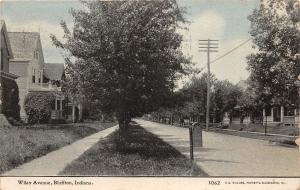 C85/ Bluffton Indiana In Postcard 1910 Wiley Avenue Homes