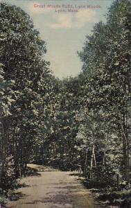 Massachusetts Lynn Creat Woods Road Lynn Woods 1911