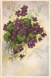 Beautiful flowers bouquet  Nice spanish postcard 1950s