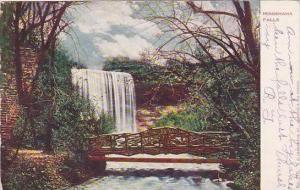 Minnesota Minnehaha Falls 1906