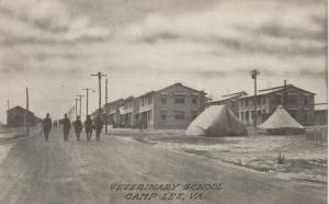 CAMP LEE, Virginia, 1910-20s; Veterinary School