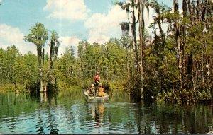 Georgia Okefenokee Swamp Boating Scene