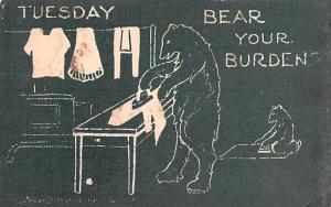 Bear Post Card Old Vintage Antique Tuesday Unused