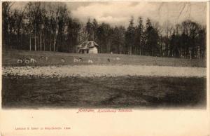 CPA ARNHEM Hertenkamp Sonsbeek NETHERLANDS (604670)