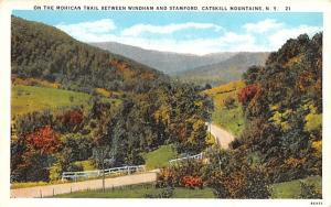 Mohican Trail Stamford, New York Postcard
