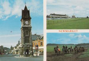 Rowley Mile Racecourse Grandstand Newmarket Horse Race Exercise Racing Postcard