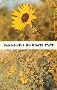 Kansas The Sunflower State KS State Flower