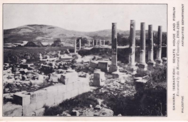 Samaria Palestine Senate House Antique Postcard