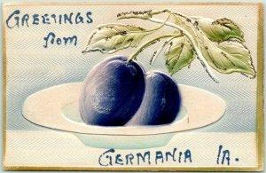 1910s Greetings GERMANIA Iowa Postcard Embossed Airbrushed Plums / Glitter