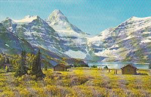 Canada Mount Assinibone Alberta
