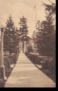 Washington Library Walk University Of Washington Albertype