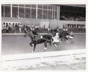 BATAVIA DOWNS RACETRACK, Lucky Lady Kash Wins Harness Horse Race