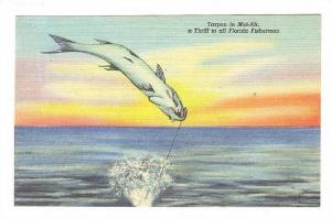 Tarpon In Mid-Air, A Thrill To All Florida Fisherman, 1930-1940s