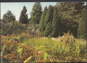 Surrey Postcard - Gardens, Birdworld, Holt Pound, Near Farnham   RR1778