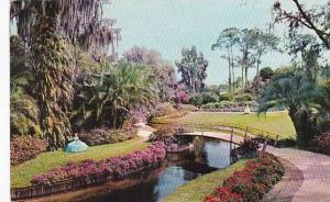 Florida Winter Haven Flower Bordered Waterway And Paths In Beautiful Florida ...