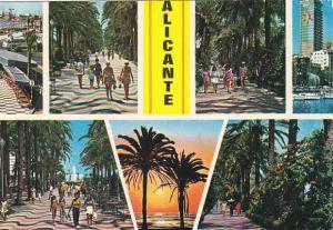 Spain Alicante Diversos aspectos