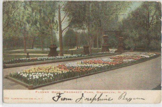 Flower Beds Prospect Park Brooklyn NY 1906