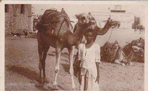 RP ; Camel , Ships of the desert , Aden , Yeman , 10-30s