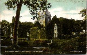 KERRY Muckross Abbey South Killarney Ireland  UK Vintage Postcard