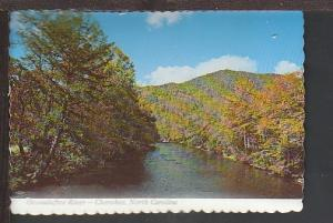 Oconaluftee River Cherokee NC Postcard BIN