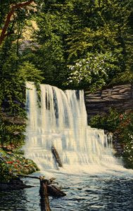 PA - Rickett's Glen. Shelden Reynolds Falls