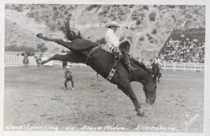 Jack Spurling on Black Widow Ellensburg WA Rodeo Bucking Horse RPPC Postcard E20