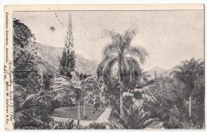 Castleton Gardens, Jamaica