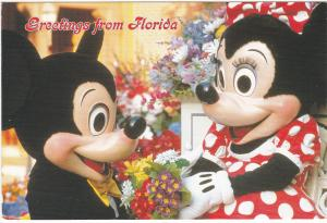 Postcard United States Florida Mickey's Florida Collection