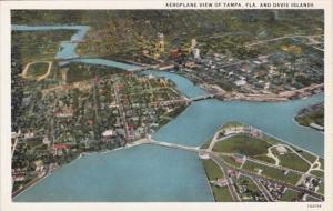 Florida Tampa & Davis Island Aeroplane View Curteich