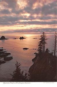 Quateata Head - Washington