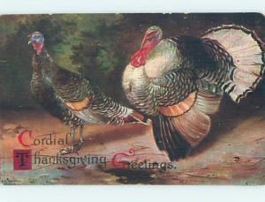 Pre-Linen thanksgiving PAIR OF BIG COLORFUL TURKEY BIRDS HQ7449