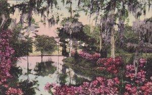 Middleton Place Gardens Charleston South Carolina