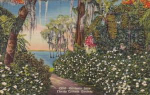 Florida Cypress Gardens Gardenia Lane