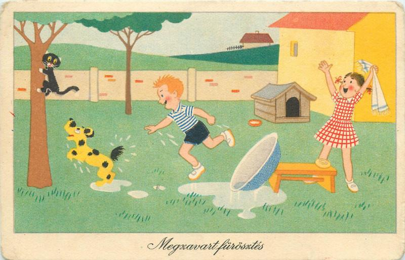 Humour Hungary postcard children couple washing dog black cat accident comic