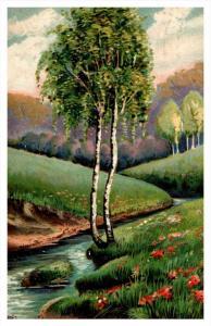 Tree along stream