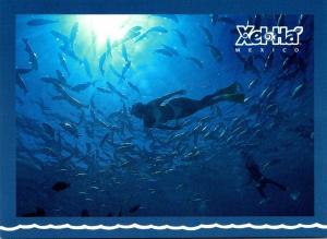 Mexico Xel Ha Snorkel Heaven