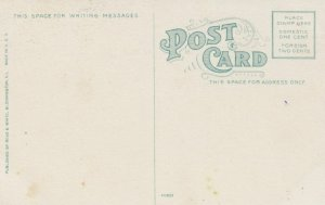 NORMAL, Illinois, 1900-10s; Driveway, I.S.N.U.