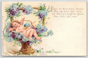 Valentine~Blue Gossamer Cupid in Heart Handle Flower Basket~Heininger Unger~1908