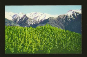Australia Snowy Mountains Range Gechi Side 1960's Color  Postcard Unposted