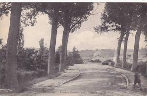 France Domremy Arrivee a Domremy par la route de Coussey