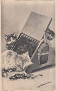 Cats & Toolbox Kitten Old Cat Shovel Spade Exploration Postcard