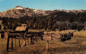 Cattle Corral & Cowboy's Retreat High Sierras California c1960s Vintage Postcard