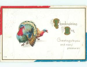 Divided-Back THANKSGIVING SCENE Great Postcard AA0499
