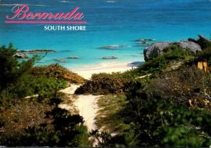 Bermuda South Shore Beach