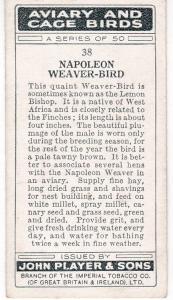 Cigarette Cards Playe Aviary and Cage Birds No 38 Napoleon Weaver-Bird