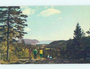 Pre-1980 NATURE SCENE Alma - Near Moncton New Brunswick NB AD6148