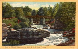 West Virginia Scene In Babcock State Park On Route 60 1948 Curteich