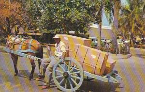 Bahamas Nassau Native Two Wheel Delivery Cart 1960