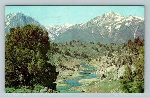 Eastern Sierra NV- Nevada, Hot Creek, Chrome c1977 Postcard